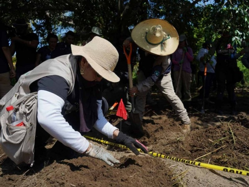 Encuentran 8 fosas clandestinas en Irapuato