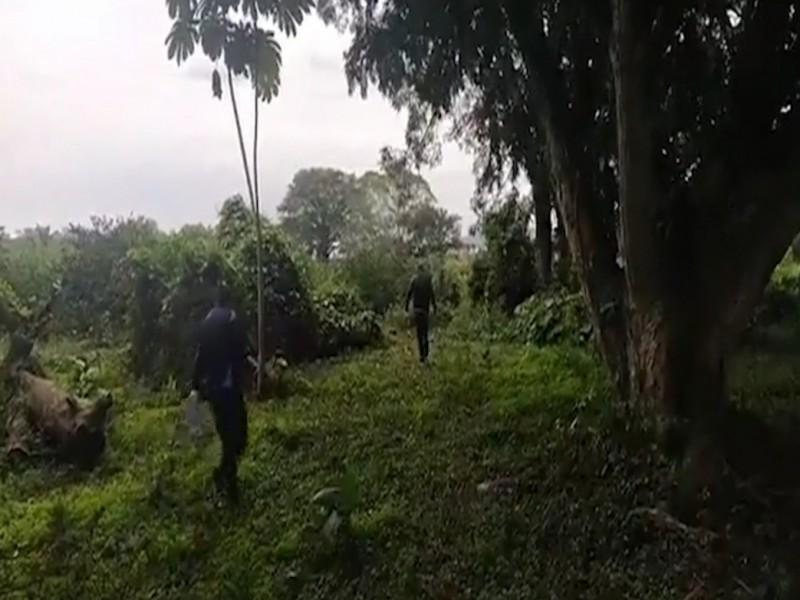 Encuentran cuerpo de mujer sin vida en Tlapacoyan