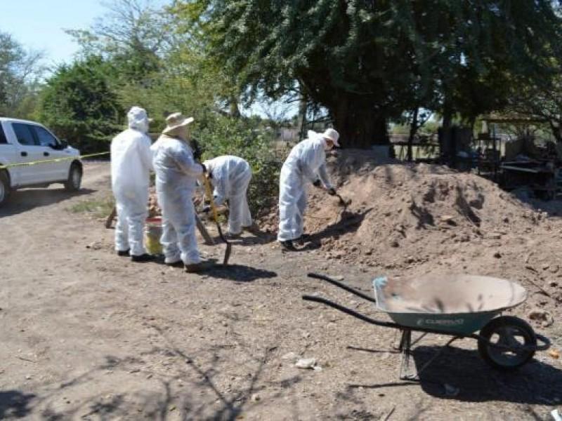 Encuentran en Tecuala restos óseos y vasijas del periodo postclásico