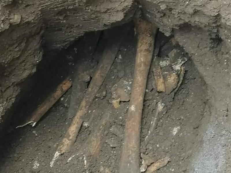 Encuentran restos con mil años de antigüedad