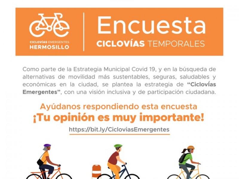 Encuesta ciudadana definirá implementar ciclovías emergentes