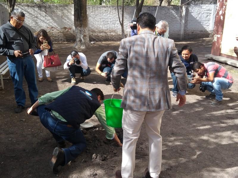 Entregan arbolitos en Corregidora