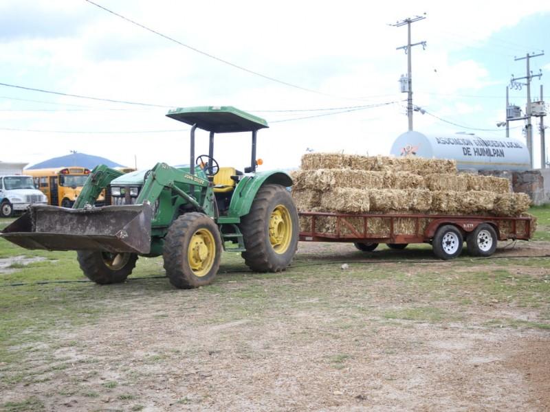 Entregan pacas de forraje a ganaderos de Huimilpan