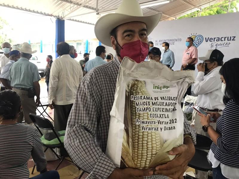 Entregan semillas de maíz a productores de Veracruz