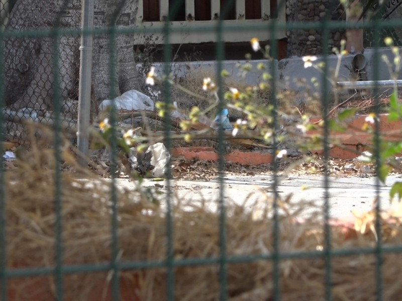 Escuelas en el abandono, solo maleza y basura