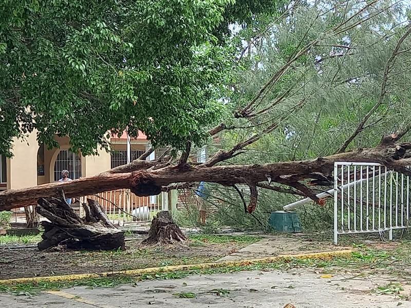 Escuelas de Tuxpan reportan afectaciones