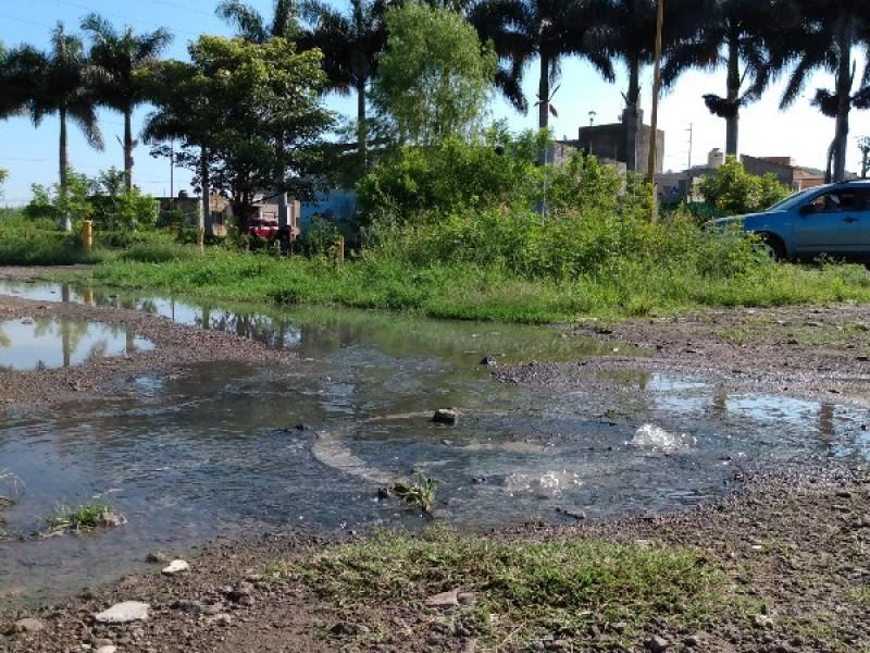 Escurrimiento de aguas negras contamina arroyo