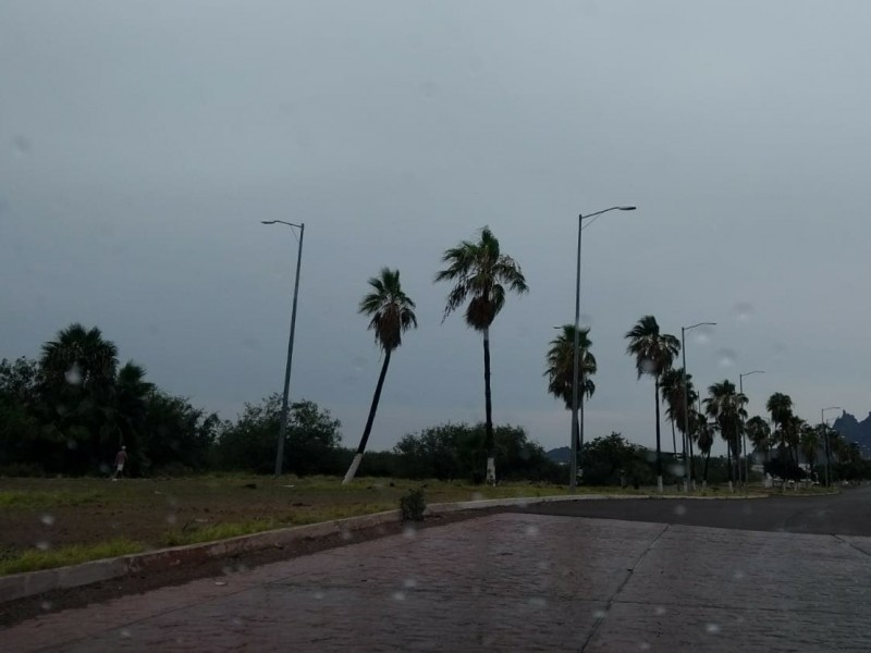 Especialistas de UNAM trabajan en obras de Guaymas