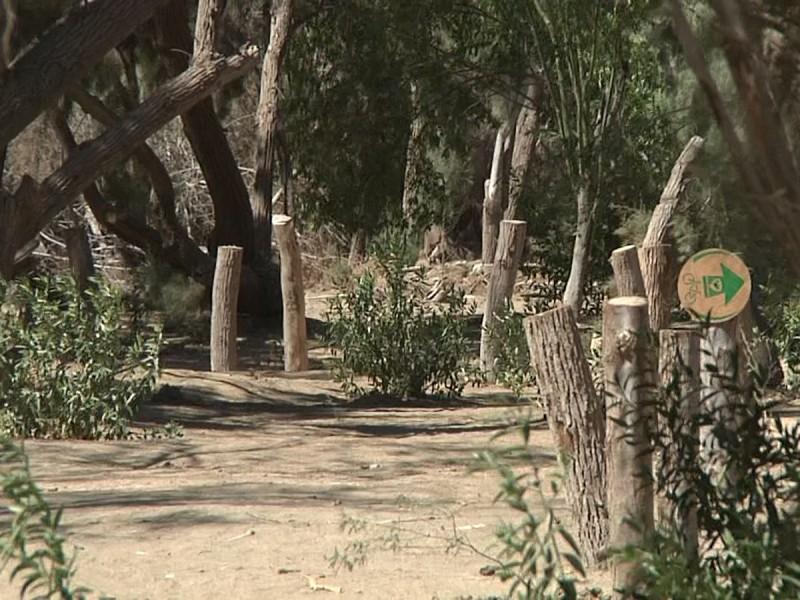 Especialistas piden que se respete la fauna del Ecoparque