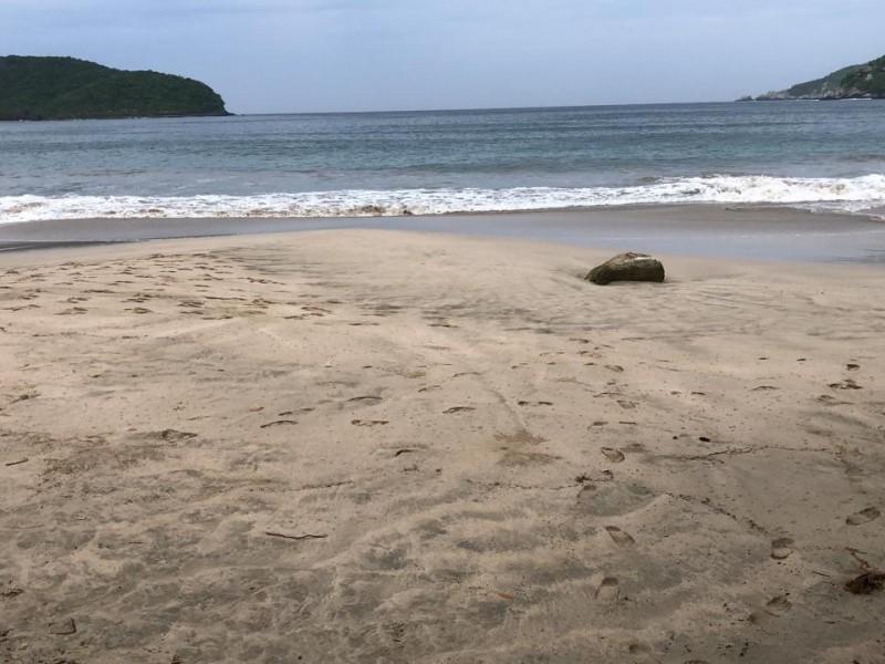Esperan variación del nivel del mar en Guerrero por sismo