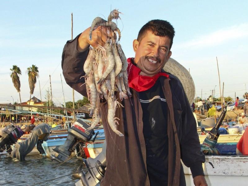 Establecen Veda a la pesca del camarón en el Pacífico