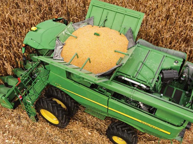 Estado debe regresar al control en acopio maíz:Economista
