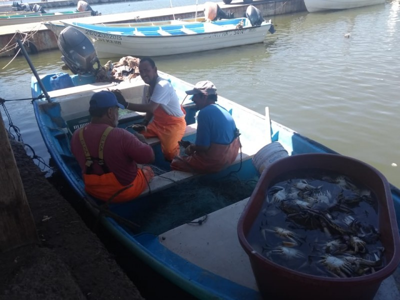 Este lunes se levanta veda para la pesca de jaiba