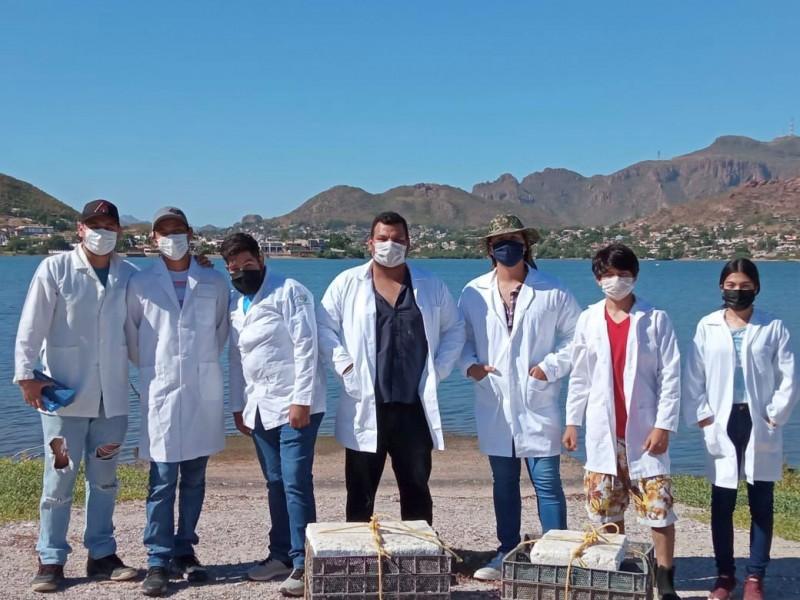 Estudiantes del ITG realizan practicas con siembra de ostión