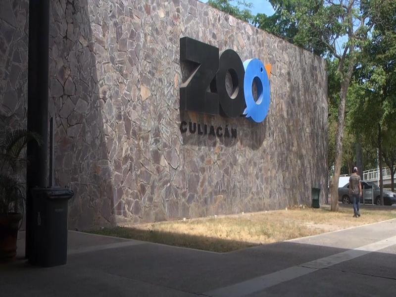 Estudiantes UdeG visitan el Zoológico de Culiacán