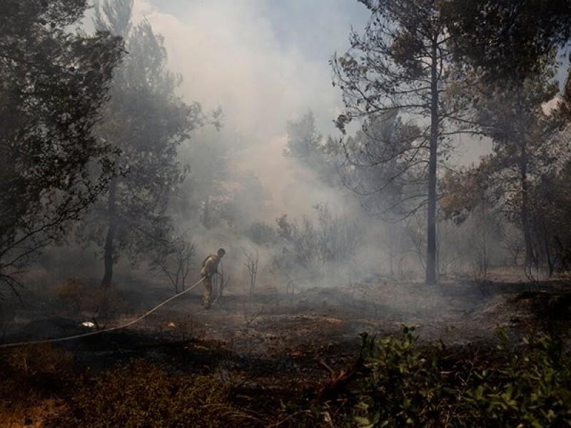 Evacuan a miles por impactante incendio forestal en Francia