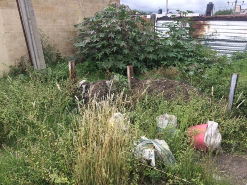 Exceso de basura en San José Mayorazgo