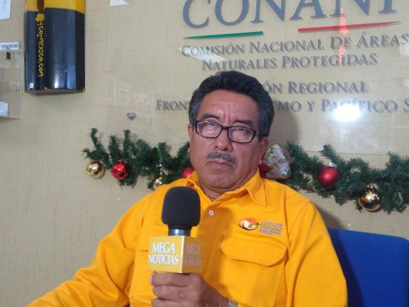 Consume quema de pastizal 5 hectáreas en Cañón