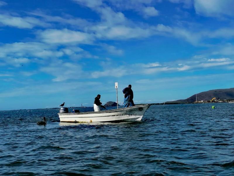 Exigen inspección y vigilancia permanente en litoral ahomense