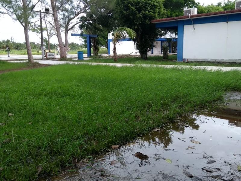 Exige CETIS pago de daños por inundaciones