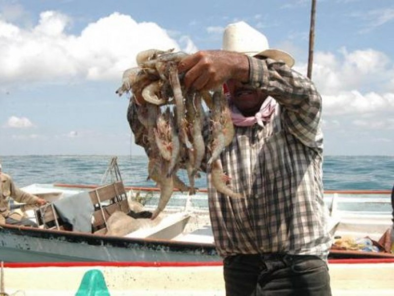 Exigen pescadores erradicar malas prácticas de captura