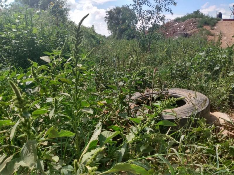 Existe poca concientización ambiental en Zacatecas