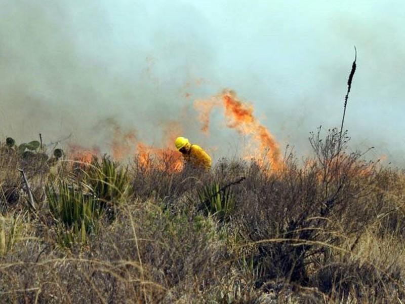 Existen en Chiapas cerca de 700 puntos de calor detectados