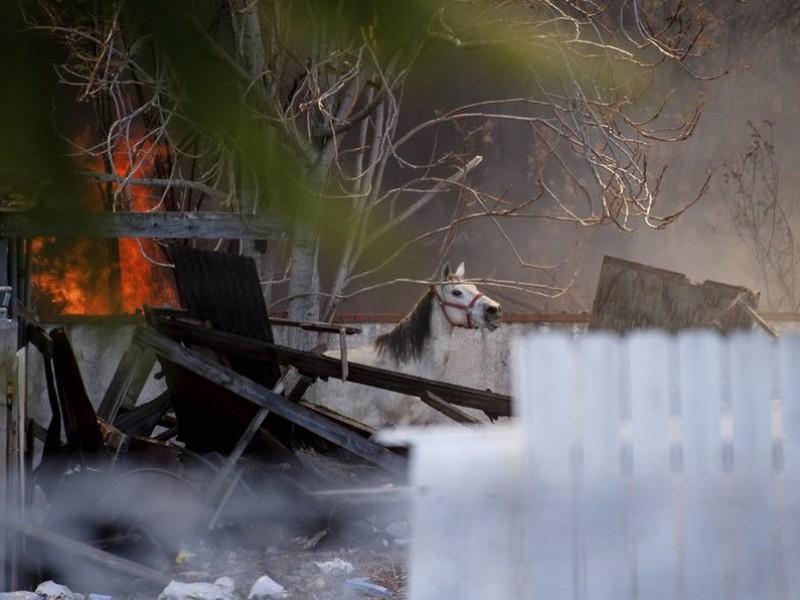 Explosión de fuegos artificiales deja 2 muertos en California