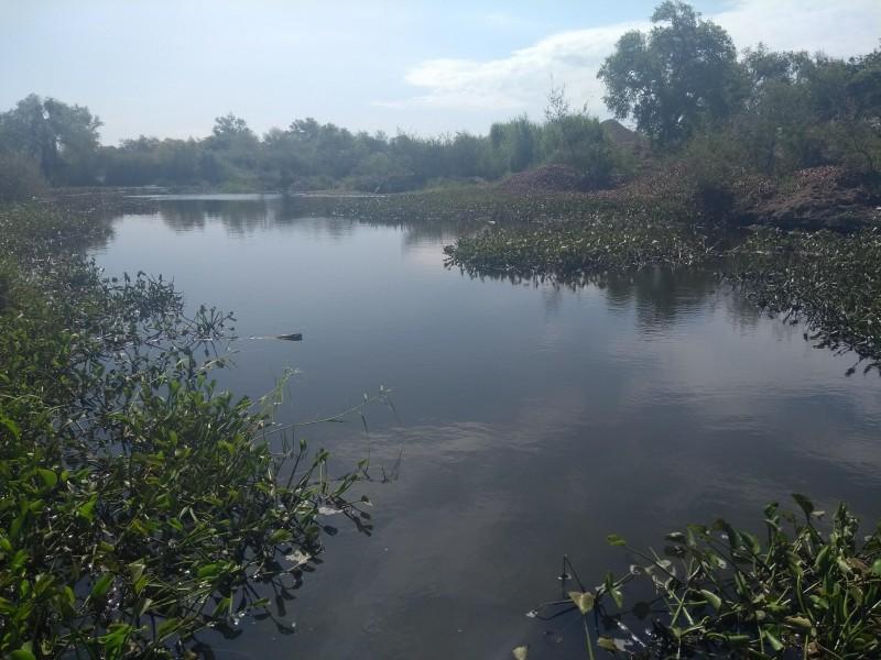 Exportaciones en riesgo tras contaminación del Río Fuerte