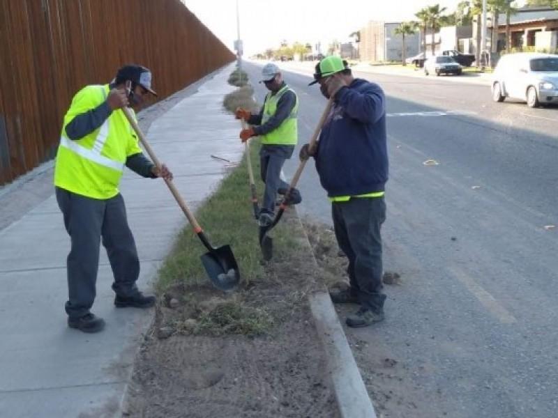 Falta de mantenimiento en calles secundarias