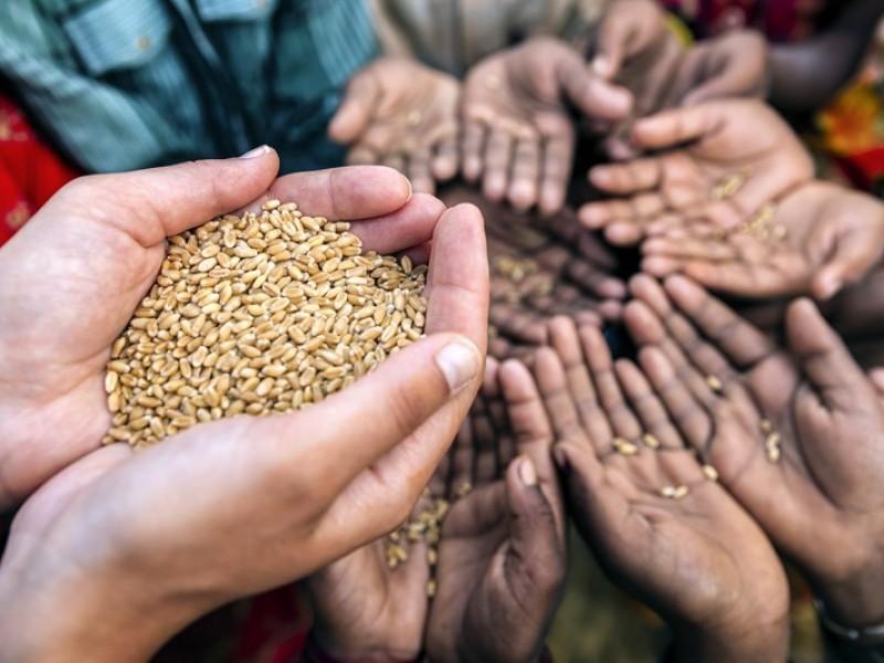 FAO advierte que pandemia Covid-19 agravará el hambre mundial