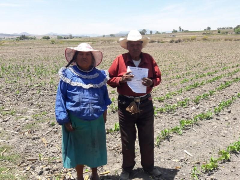 Federación entrega apoyos al campo por 60 mdp