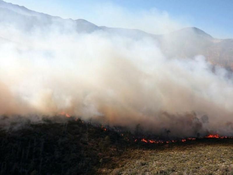 Fiscalía tiene identificados a presuntos responsables de incendio de Arteaga
