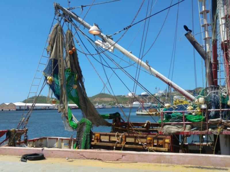 Flota camaronera prevé perdidas económicas por falta de apoyos federales