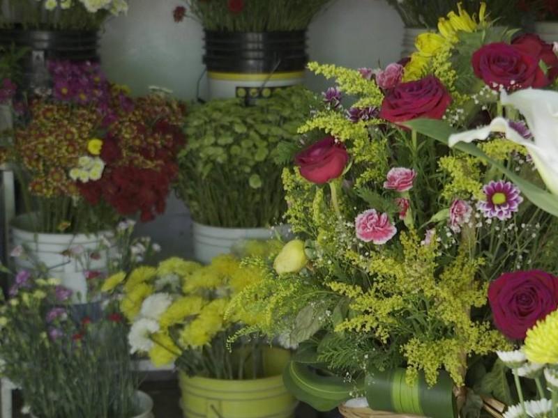 Floristas se establecerán en la plaza del músico