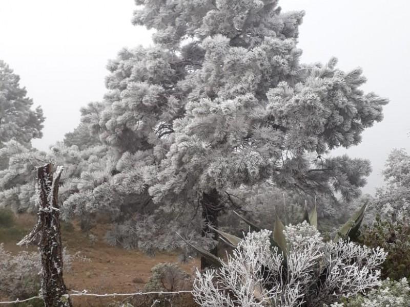 Frío fin de semana en Guanajuato