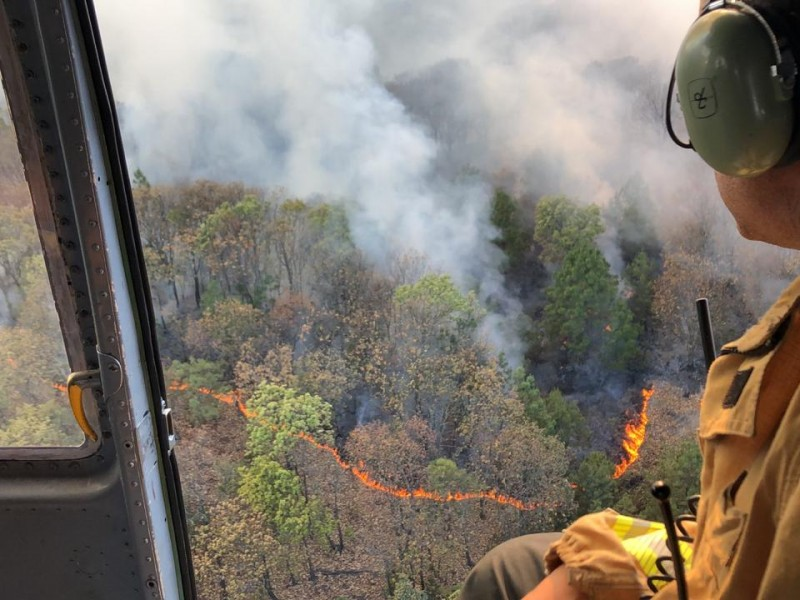 Fuego consume 74 hectáreas en La Primavera