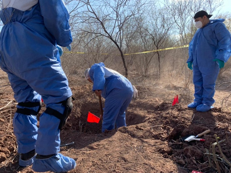 Fueron dos cuerpos y 4 osamentas encontradas en Cajeme