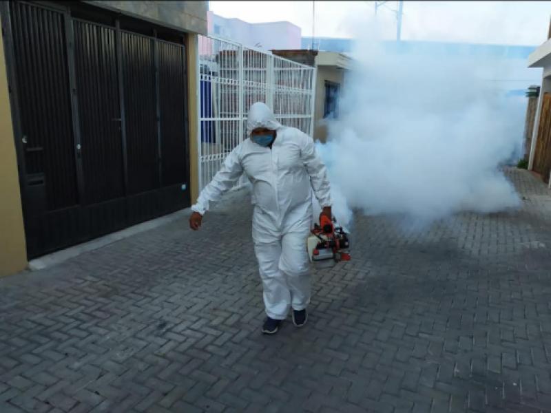 Fumigación poco efectiva para combatir incidencia de dengue
