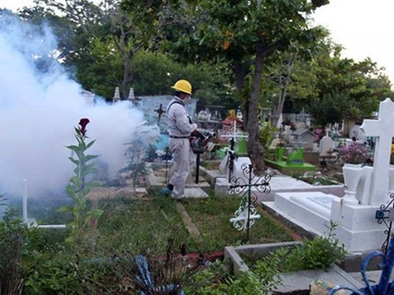 Fumigan panteón de Salina Cruz para evitar enfermedades: Dengue, Zika