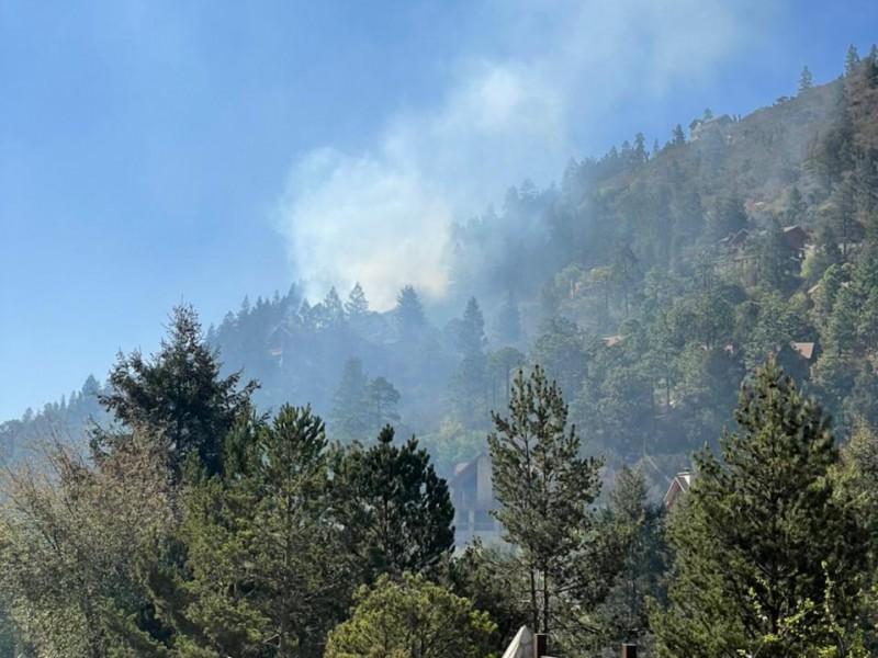 Golpea nuevo incendio forestal a Arteaga