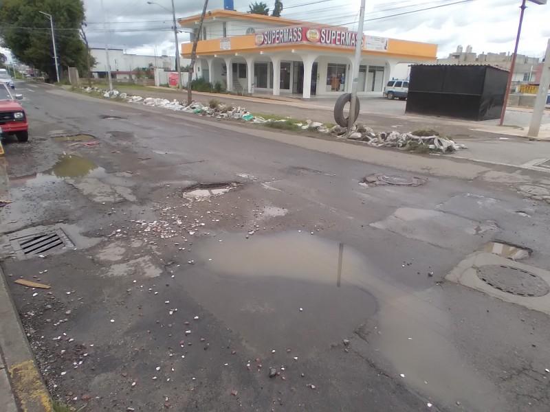 Grandes baches ocasionan molestia entre vecinos de Lomas de Castillotla