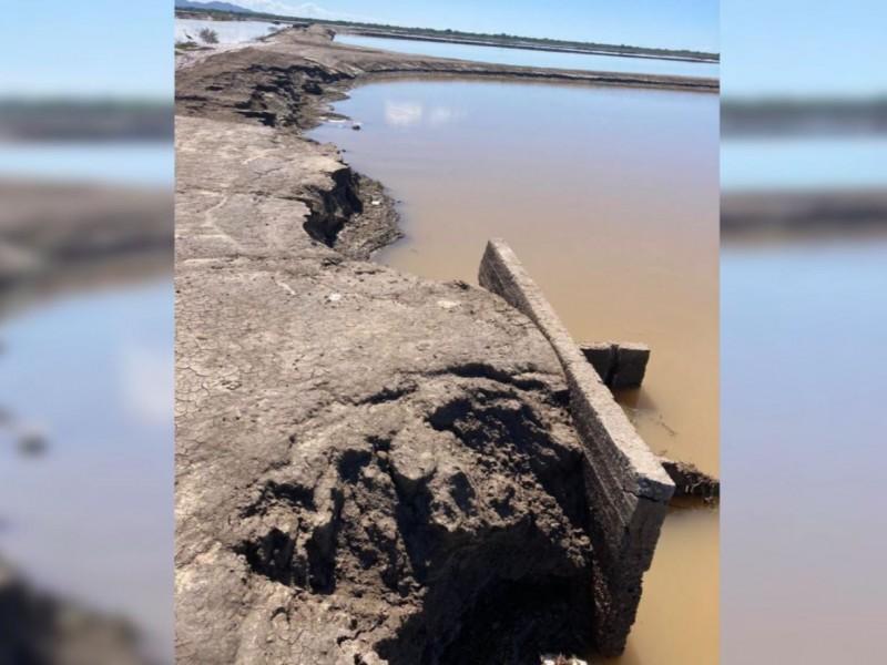 Granjas acuícolas afectadas por huracanes al sur de Sinaloa