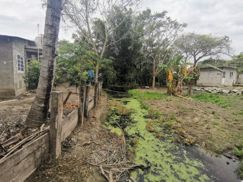 Grave problema de contaminación en arroyo por basura y drenaje