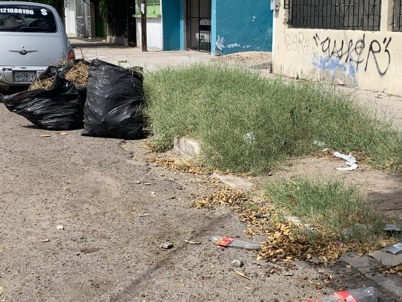 Habitantes de la colonia 8 de octubre denuncian basura