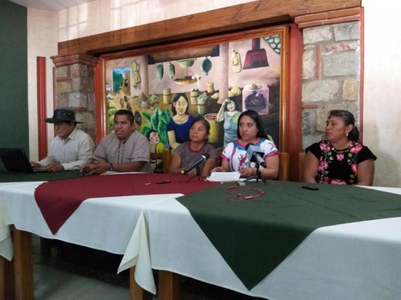 Habitantes de Santa María del Mar piden concluir granja solar