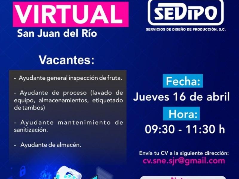 Habrá reclutamiento masivo virtual en San Juan del Río