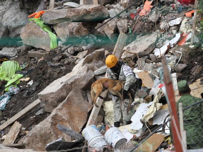 Hallan cuerpo de menor desaparecida en el Cerro del Chiquihuite