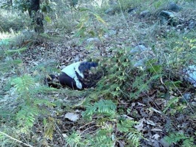 Hallan cuerpo de mujer en Jardines de la Montaña