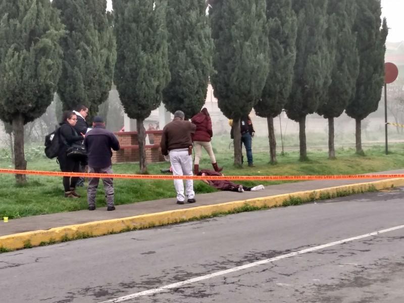 Hallan mujer sin vida en Santa María Totoltepec